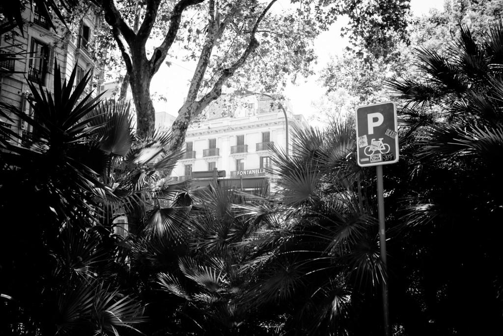 Barcelona_street (13 von 56)
