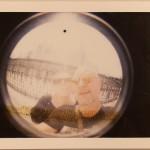 rom_polaroids-24