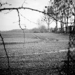Hier sollen mal Häuser gebaut werden, leider. Früher wuchsen hier Obstbäume.